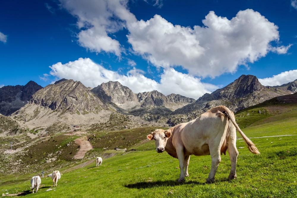 Pyreneje - turistika pro seniory 55+ foto 10