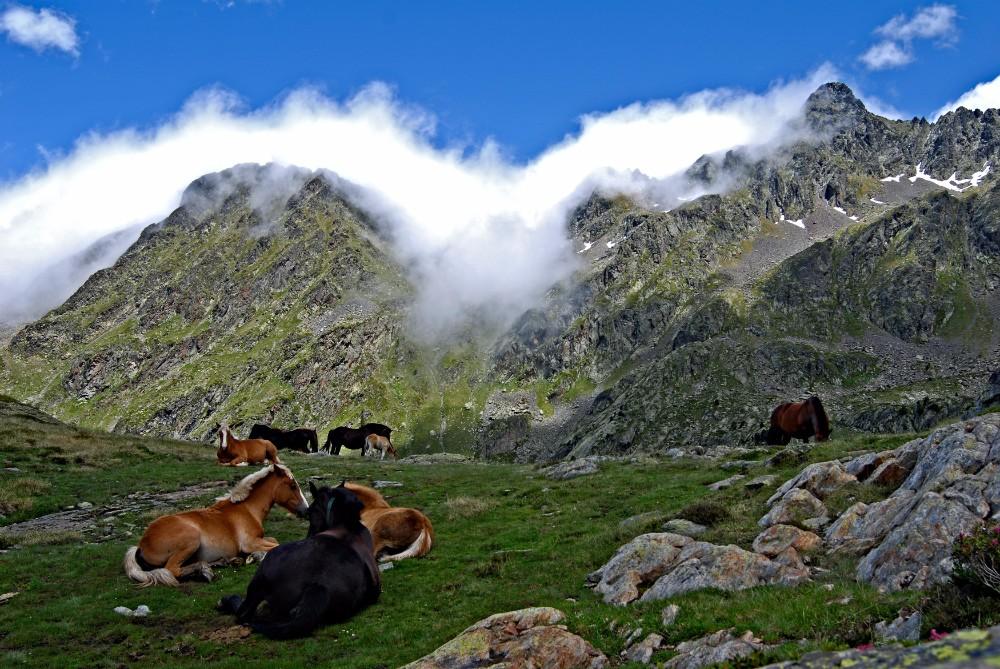Pyreneje - pěší turistika pro seniory - foto 1