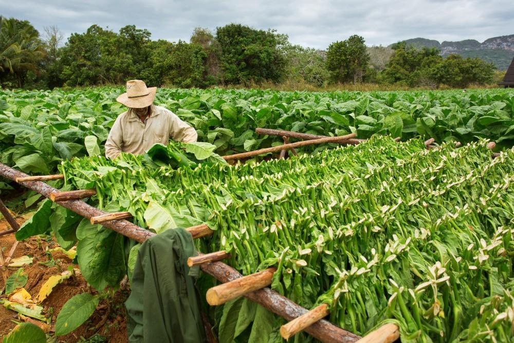 Kuba 55+ poznávací zájezdy pro seniory - foto 2