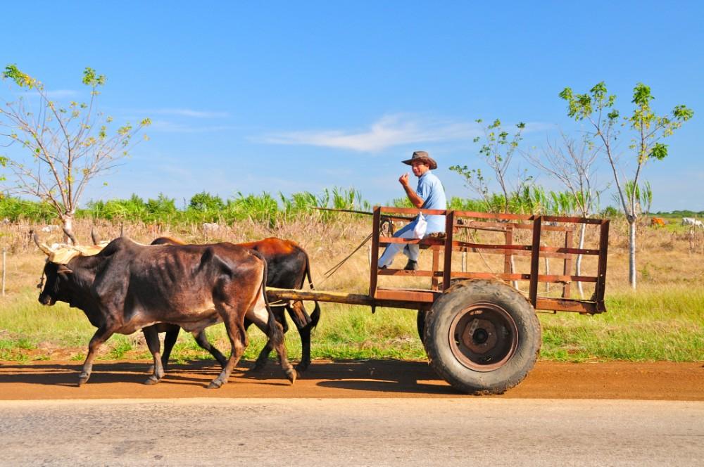 Kuba pro seniory - foto 4
