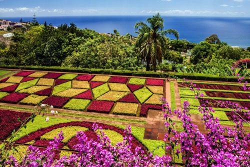 Květinové slavnosti Madeira pro seniory 55+ - foto 32