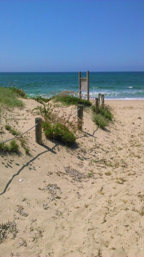 Moře a pláž u hotelu Baia delle Mimose jsou nezapomenutelné