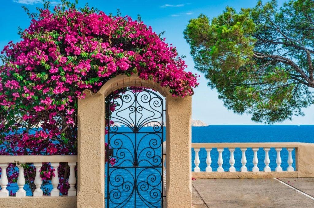 Kolo_Menorca_0021