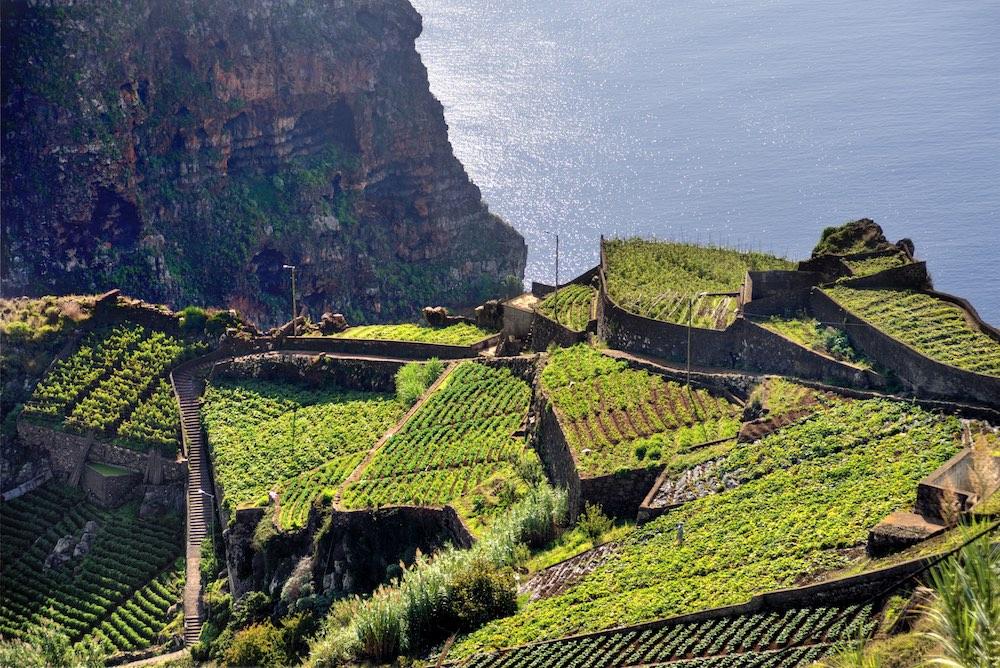 Atlanstký festival na Madeiře - foto 9