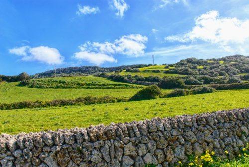 Krásnou jarní zelenou si na Menorce užijete plnými doušky.