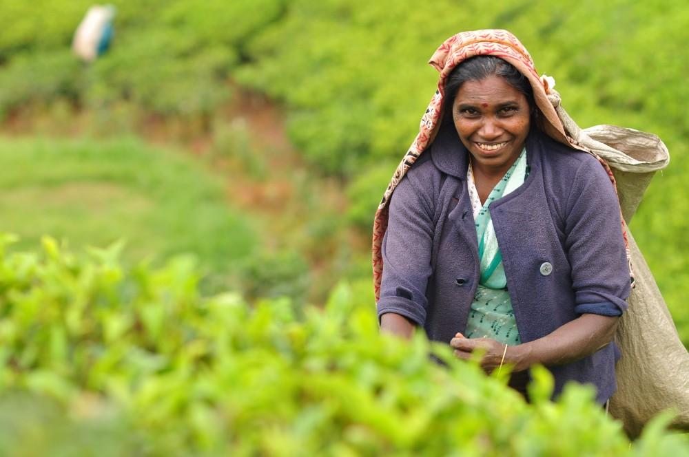 Srí Lanka - zájezdy pro seniory - foto 9