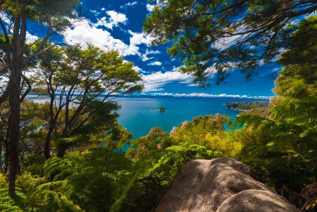 Výhled ze zelené džungle národního parku Abel Tasman na klidnou hladinu oceánu.
