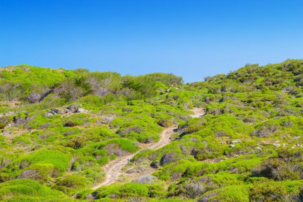 Historická Koňská stezka Camí de Cavalls prochází i svěží zelenou krajinou.