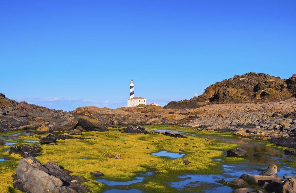 Cestou k majáku Favaritx na Menorce projdete i několika mokřady.