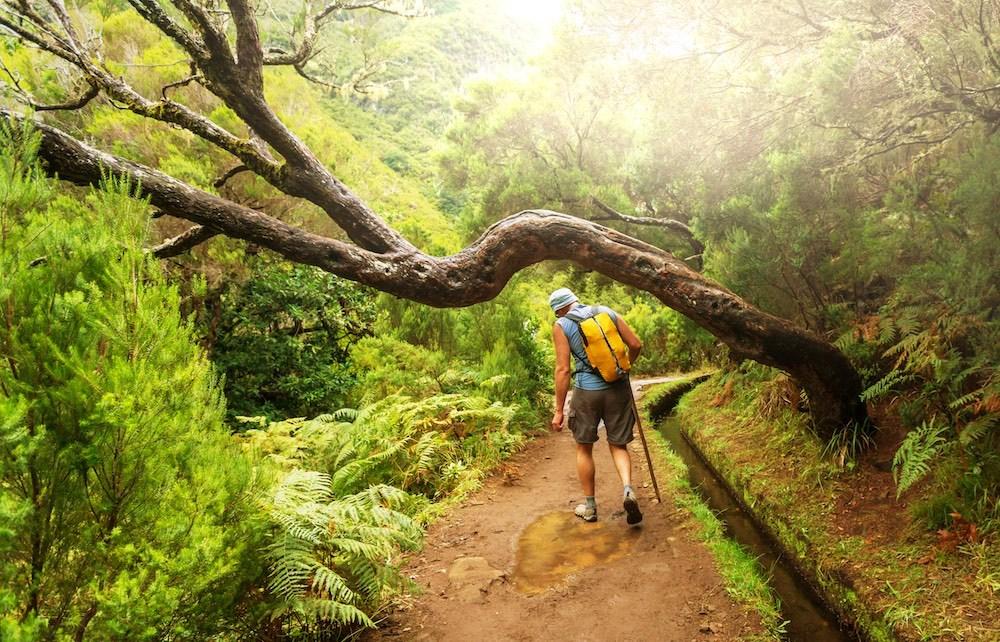 Madeira 55+ pěší turistika pro seniory - foto 8