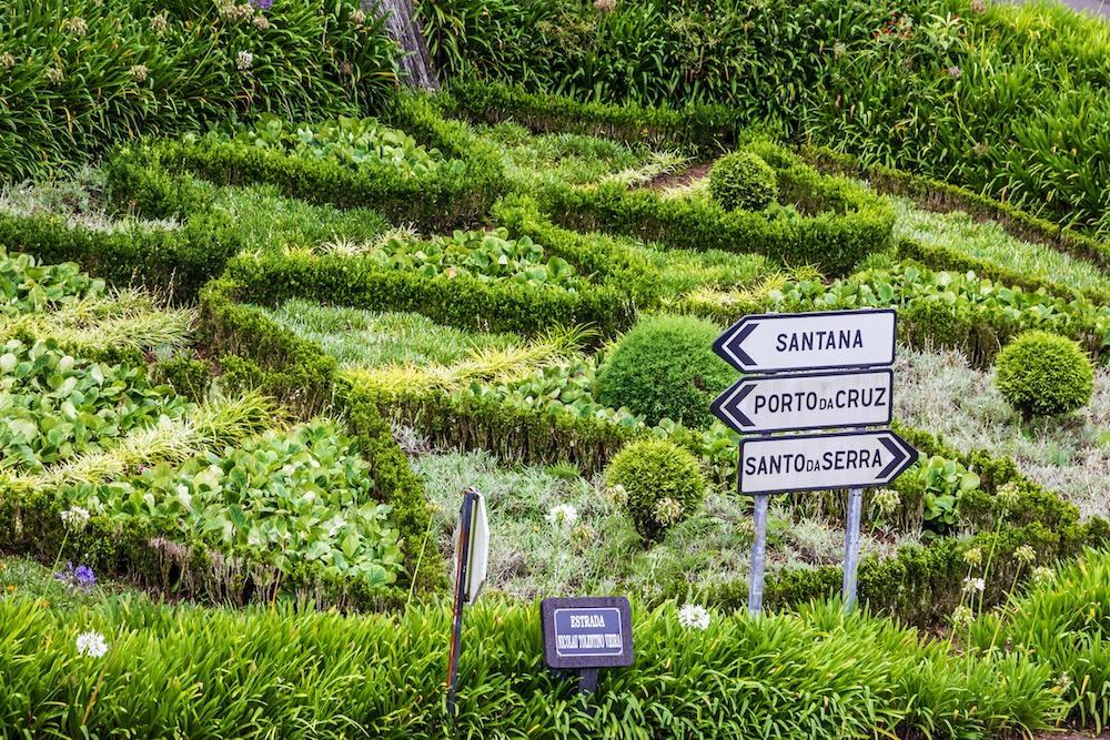 Madeira 55+ pěší turistika pro seniory - foto 10