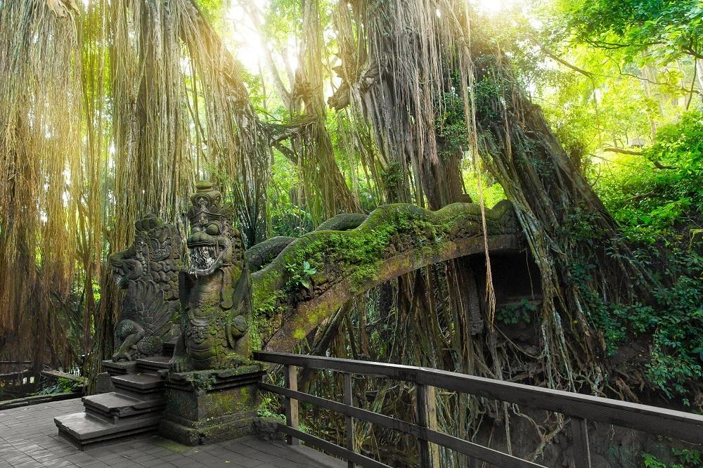 shutterstock_323650193 Monkey Forest, Ubud, Bali