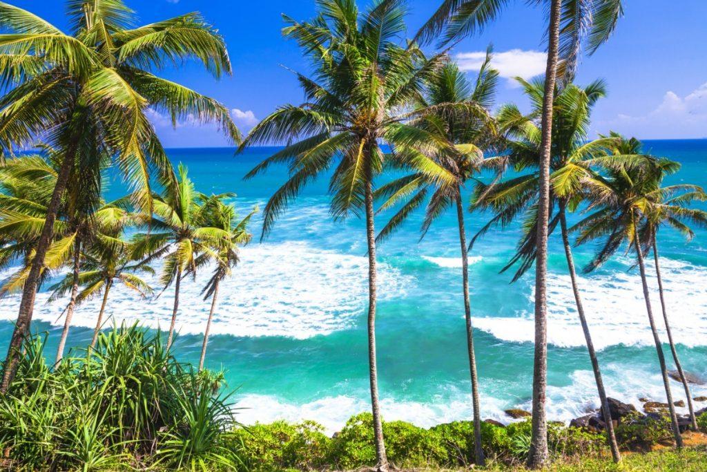 Srí Lanka - exotika pro seniory 55+ foto 1