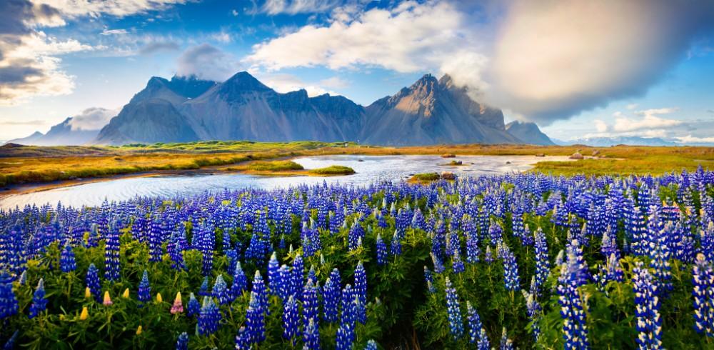 Island - dovolená pro seniory 55+ foto 2