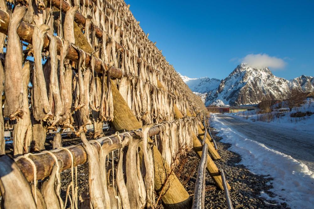 Severní Norsko pro seniory 55+ foto 1