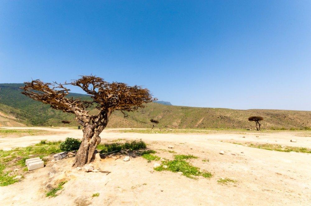 Omán 55+ dovolená pro seniory - foto 3