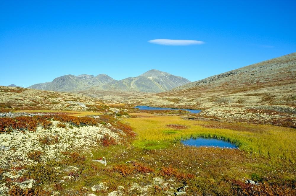 Velká cesta zemí fjordů, Norsko pro seniory 55+ - foto 13