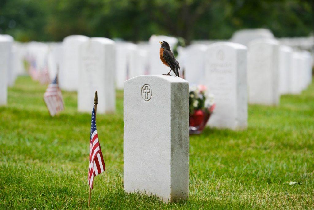 Na Arlingtonském hřbitově je pochován i významný americký prezident J. F. Kennedy se svou ženou.