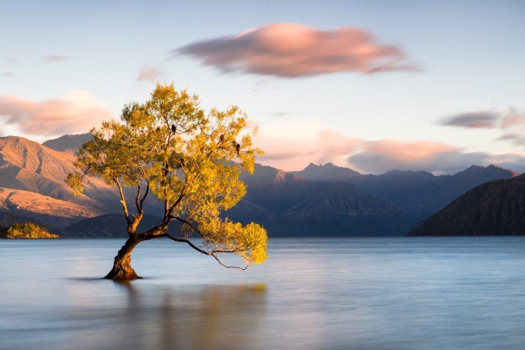 Nádherné jezero Wanaka patří k největším jezerům na Novém Zélandu.